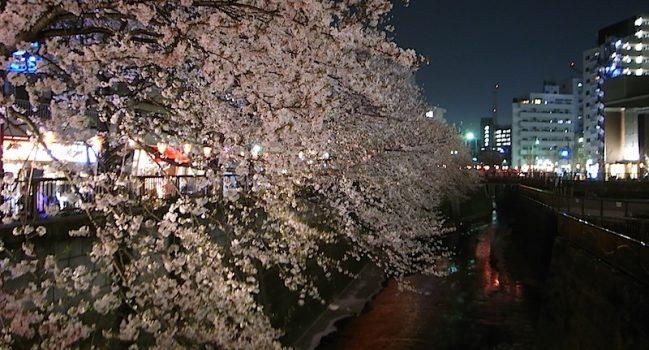 昼の渋谷と夜の中目黒