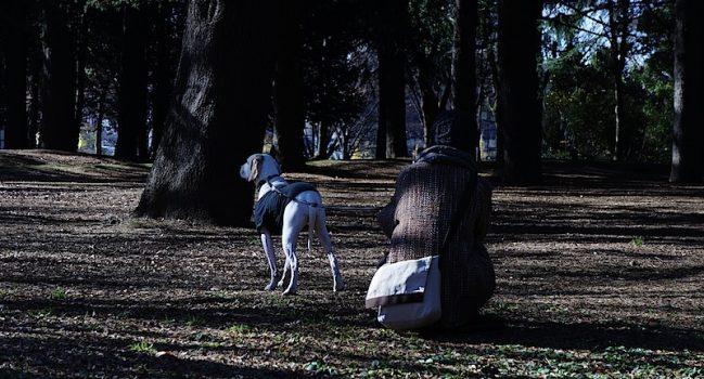 霜降る代々木ドッグラン