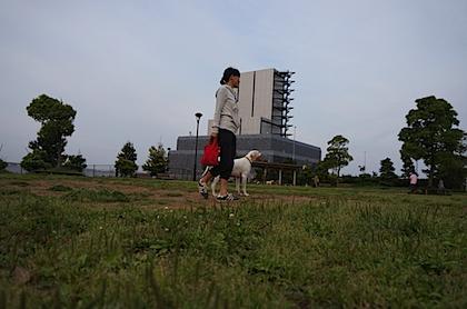 DSC06273.JPG
