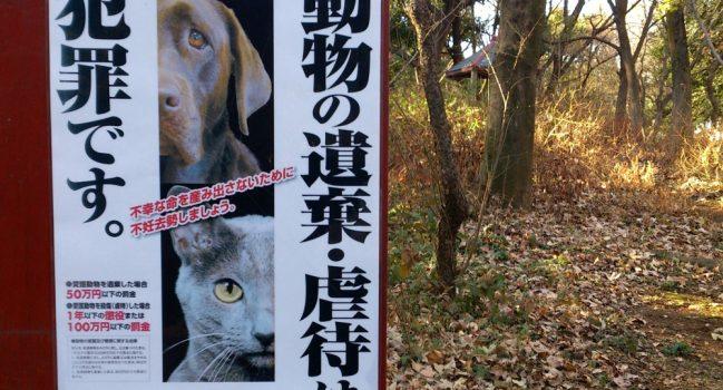 動物の遺棄・虐待は犯罪です。