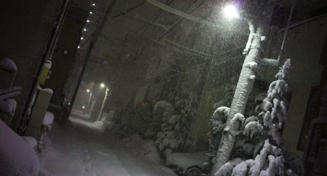 東京目黒吹雪