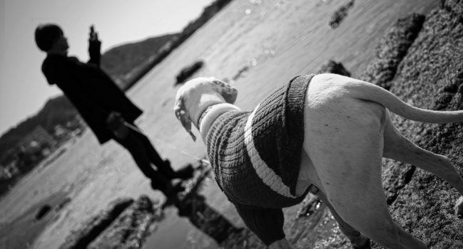 砂浜ボール遊び(森戸海岸)