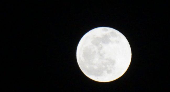 見上げてごらん。夜の、月を。