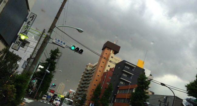 雷雨とモグ