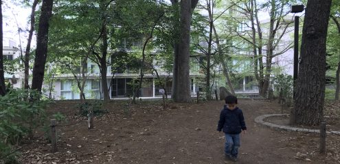 ミニSL試乗会@林試の森公園と、その後…