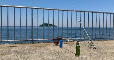 令和初の猛暑日(東京は真夏日)に釣りしてる風