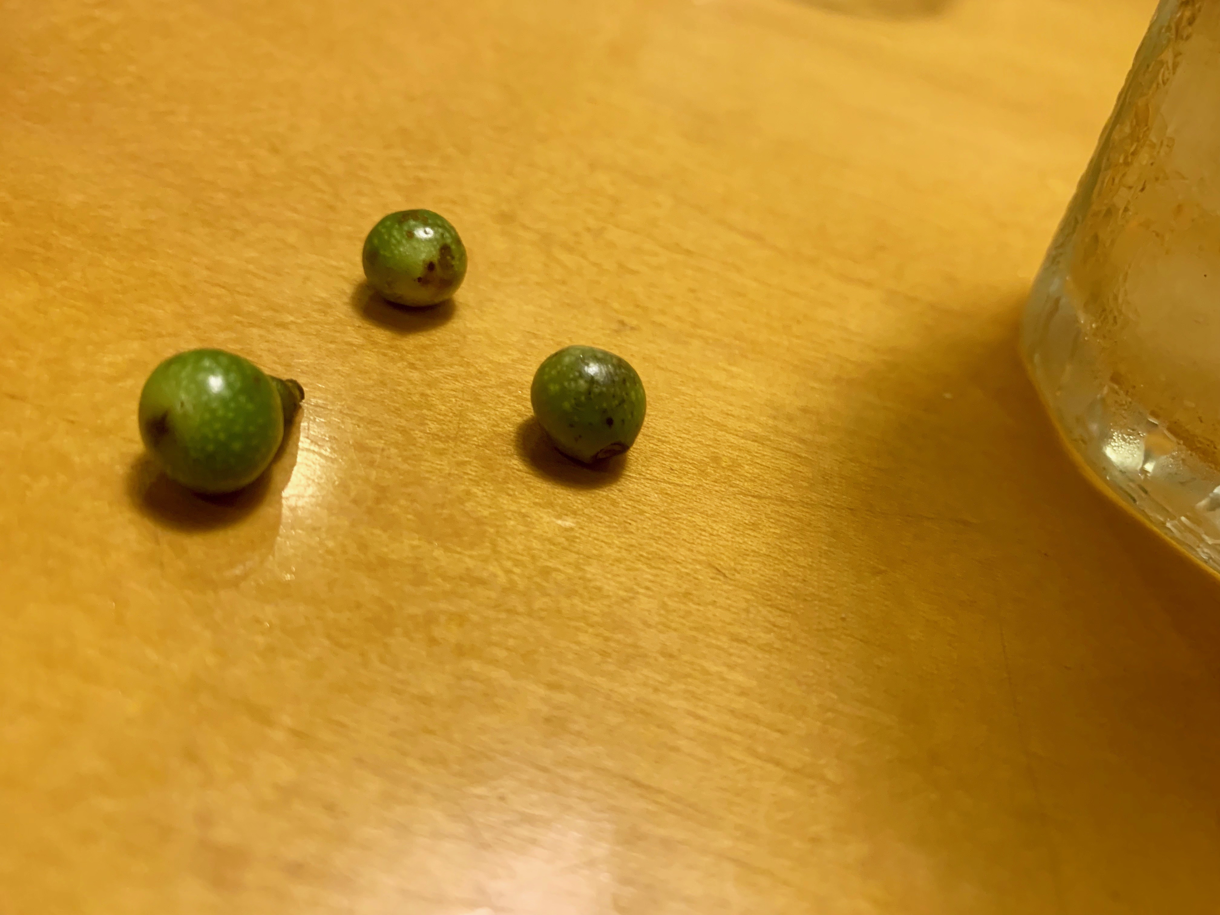 3つの木の実